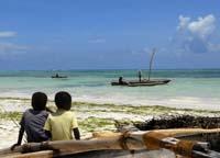Fragrant Zanzibar
